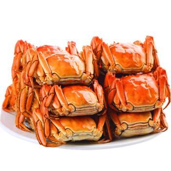 现货大闸蟹【景明】黄河口大闸蟹 公蟹3.1-3.3两 母蟹2.2-2.4 8只装