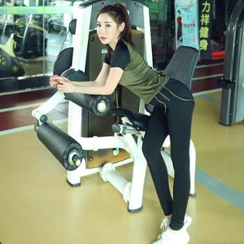 吸湿排汗条纹假两件 健身瑜伽裤 运动跑步裤ZDW3002