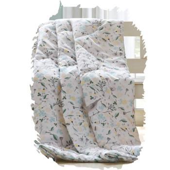 喜芙妮(SOFTNIE)家纺床上用品 格力空调被 150*200