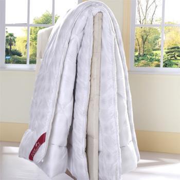依温妮家纺正品保暖纤维单人冬被特价促销
