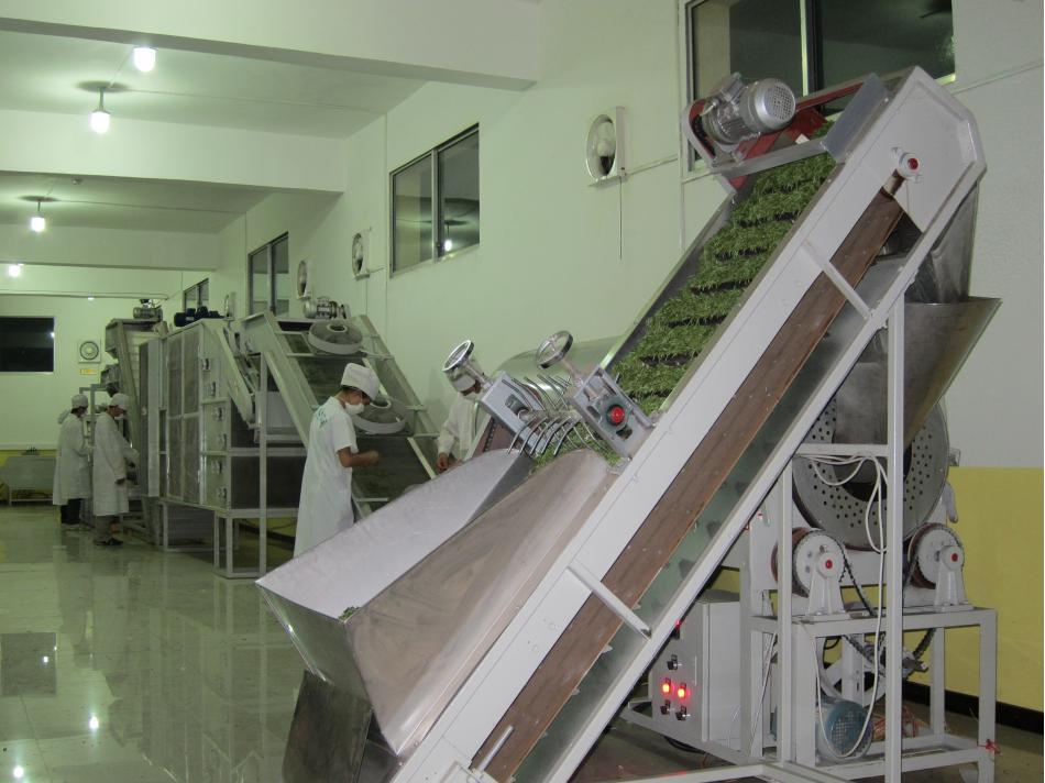 贵州.都匀市匀山茶叶有限责任公司 茶叶加工流水线车