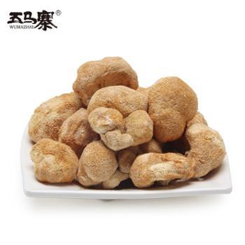 五马寨珍菌 猴头菇 食用菌菇猴头 山珍干货 粤北特产送礼自用佳宜