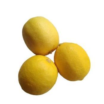 恒宝利 黄柠檬一级果2斤装