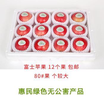 【鑫耕田】优质富士苹果 80#果 个头较大 12个 甜脆爽口入口留香全国包邮