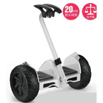 凤凰儿童自平衡车8-12成年双轮智能带扶杆两轮越野体感代步平行车