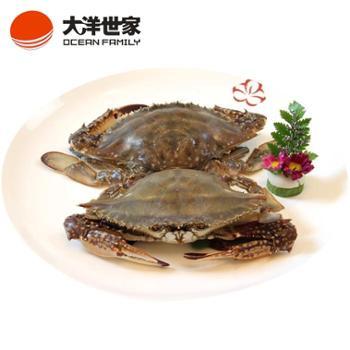 大洋世家红膏梭子蟹200/300g舟山野生海捕新鲜活冻红膏蟹