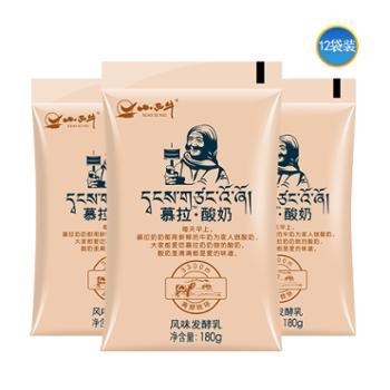 小西牛 青海慕拉酸奶高原酸奶慕拉奶奶老酸奶风味熟酸奶180g*12袋