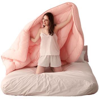 南方寝饰被子冬被加厚保暖春秋被芯棉被褥单人双人空调被四季通用