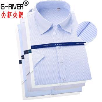 大江大河G-RIVER小V领全棉免烫衬衫女短袖长袖衬衣