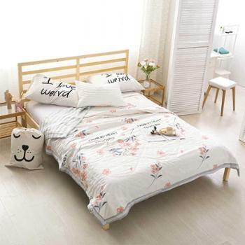 羽芯家纺ab版纯棉棉花夏凉被子可水洗简约全棉空调被床上用品