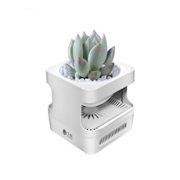 GOOGU/戈鼓 盆栽植物空气净化器桌面小型家用卧室办公室去除异味