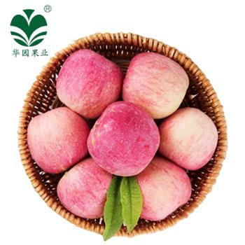 【华园】甘肃特产红富士苹果家庭装10斤