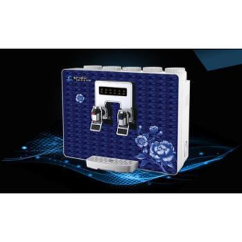 蓝玫瑰 净水机智能厨房净水器直饮机ro反渗透纯水机自来水过滤器