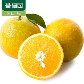 当季新鲜水果夏橙 橙子5斤装60-70mm