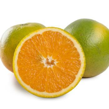誉福园现摘现发秭归夏橙榨汁橙5斤装