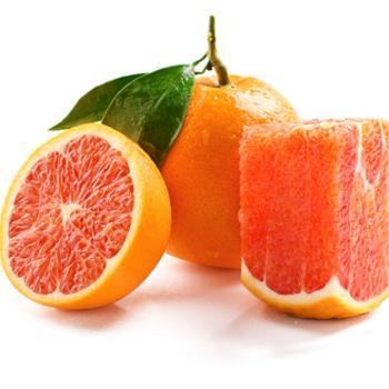 誉福园脐橙中华红红肉血橙8斤18-25个