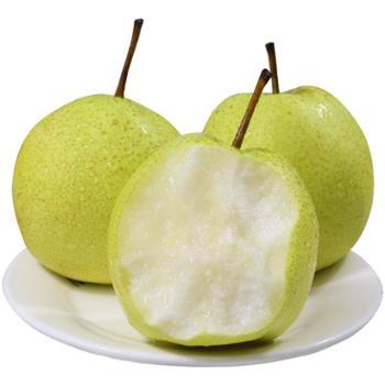 现摘酥梨9斤装脆甜汁多