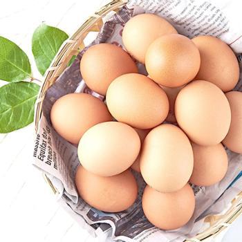 土鸡蛋农家散养新鲜 柴鸡蛋 农村笨鸡蛋月子30枚