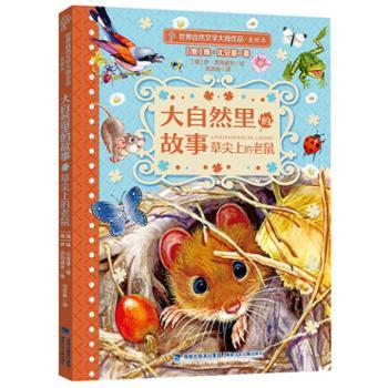 草尖上的老鼠——世界自然文学大师作品(美绘版)