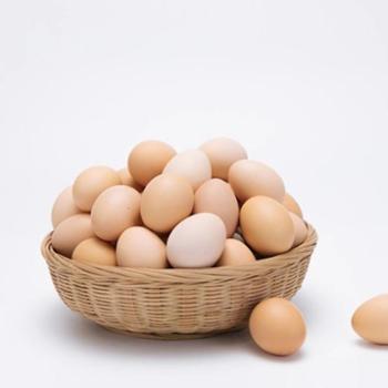 山土御品200枚白壳鸡蛋