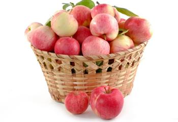 明卉源绿色无公害苹果 9粒装 果径80# 5斤左右
