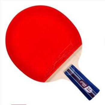红双喜直拍双面反胶乒乓球拍弧圈结合快攻2星赠拍套X2006(A2006)【新老包装随机发】1支