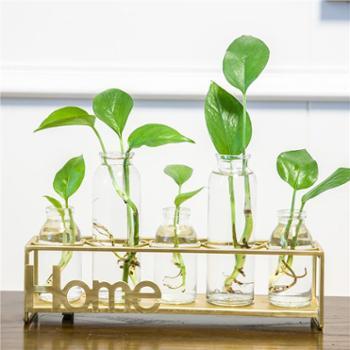 花瓶玻璃透明绿萝水培养植物小清新客厅插花北欧家居创意装饰摆件