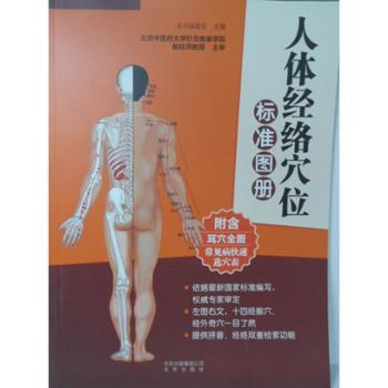 人体经络穴位标准图册 图书 保健/养生 中医养生 经络穴位