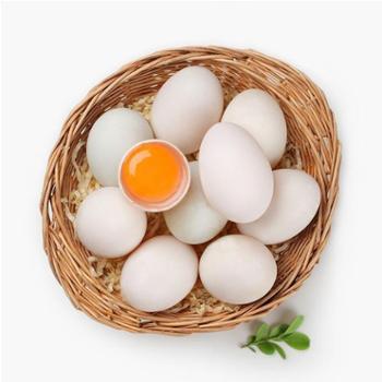 江山 新鲜鸭蛋 水鸭蛋 12枚