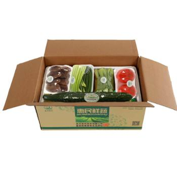 惠民蔬菜应急生态蔬菜包套餐一日常生活所需新鲜蔬菜10种礼品箱泡沫保鲜包装