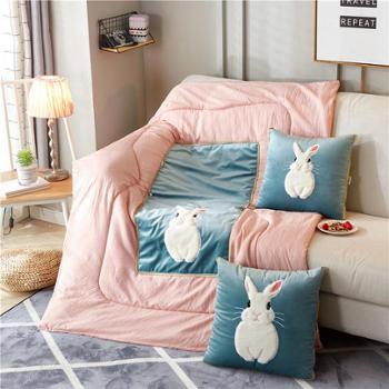 两用抱枕被卡通创意靠垫短毛绒靠枕