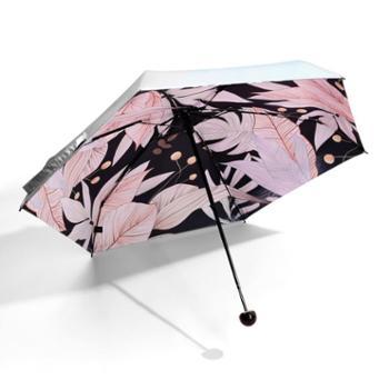 海螺防晒伞——朝华、夕时