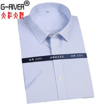 大江大河/G-RIVER全棉免烫短袖衬衫DP第三代成衣免烫技术