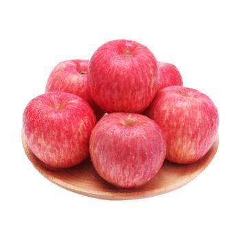 达生源洛川苹果红富士80#12枚精品礼盒