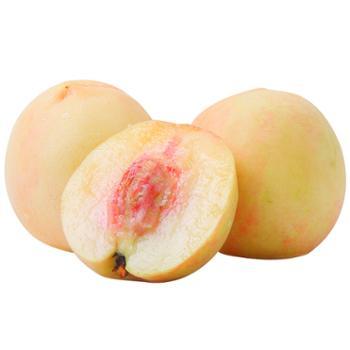 老陈家 奉化水蜜桃 12个 约5斤/箱