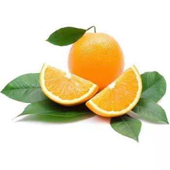 秭归脐橙纽荷尔脐橙净重9斤装精品中大果单果果径65mm起