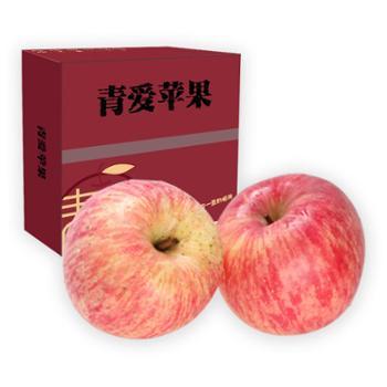 青怡 青爱系列苹果 带箱3kg/件