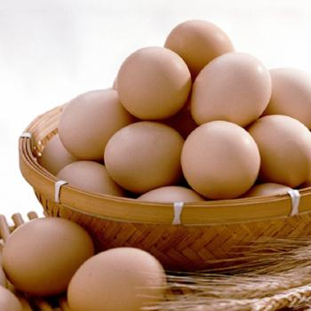 恰恰吉土鸡蛋粉壳月子鸡蛋40枚